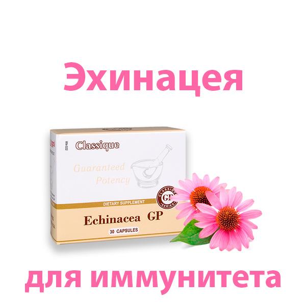ekhinaceya-dlya-immuniteta-vzroslym