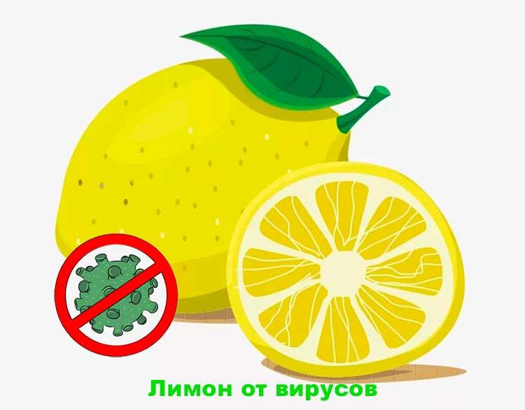 limony-ot-virusov