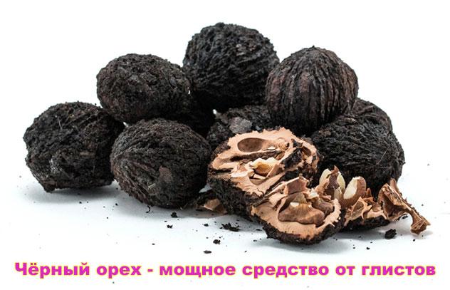 chyornyj-orekh-ot-glistov